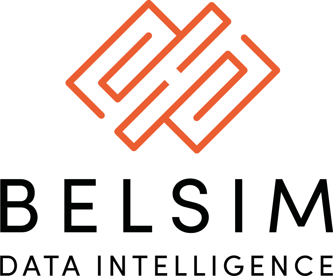 Belsim Logo